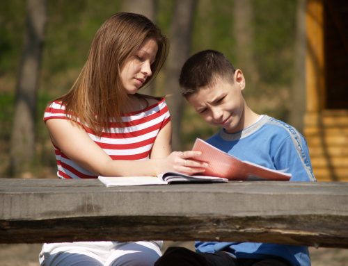 Test Scores: What Does Mean, Mean?